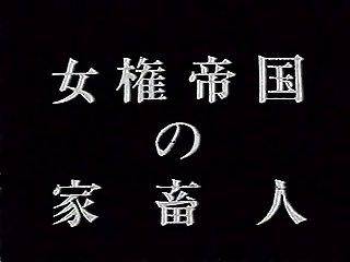 japanese dom REI AOYAMA
